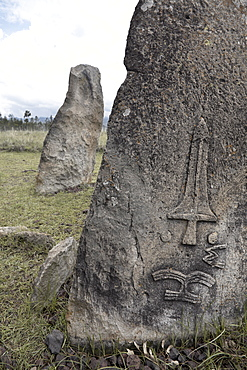 The mysterious site of Tiya, containing around 36 ancient stelae, UNESCO World Heritage Site, Tiya, Ethiopia, Africa
