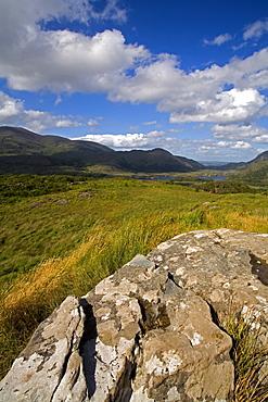 Ladies View, Killarney National Park, County Kerry, Munster, Republic of Ireland, Europe