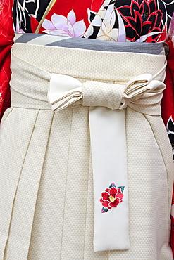 Kimono, Arcade Street, Kochi City, Shikoku Island, Japan, Asia