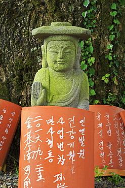 Offerings, Gwaneumsa Temple, Jeju Island, South Korea, Asia