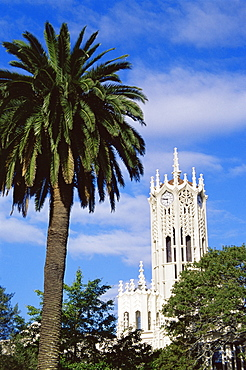 Old Arts Building and clock tower, University of Auckland, Auckland, North Island, New Zealand, Pacific