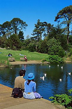 Botanical Gardens, Golden Gate Park, San Francisco, California, United States of America, North America