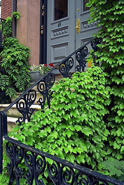 Detail of house, Beacon Hill area, Boston, Massachusetts, New England, United States of America, North America