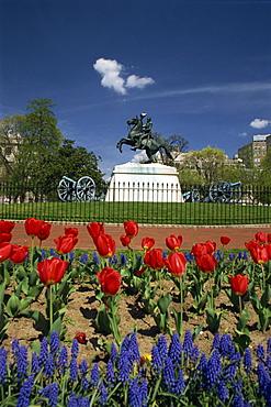 Andrew Jackson statue, Lafayette Square, Washington D.C., United States of America, North America