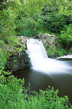 Poulanassy Falls, Thomastown, County Kilkenny, Leinster, Republic of Ireland, Europe