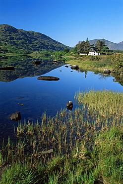 Looscaunagh Lake, Lakes of Killarney region, County Kerry, Munster, Republic of Ireland, Europe