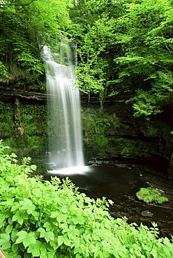 Glencar waterfall, County Leitrim, Connacht, Republic of Ireland, Europe