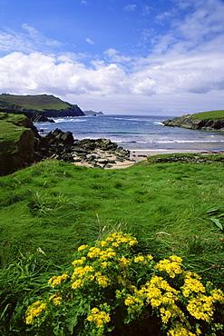 Dunquin Beach, Slea Head, Dingle Peninsula, County Kerry, Munster, Republic of Ireland, Europe
