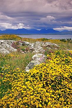 Carna Bay, Connemara area, County Galway, Connacht, Republic of Ireland, Europe