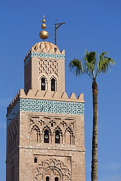 The Minaret of the Koutoubia Mosque with single palm tree, UNESCO World Heritage Site, Marrakech, Morocco, North Africa, Africa