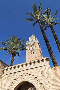 Gateway and the Minaret of Koutoubia Mosque with palm trees, UNESCO World Heritage Site, Marrakech, Morocco, North Africa, Africa