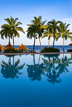 Reflections of palm trees in the swimming pool at Sugar Beach, St. Lucia, Windward Islands, West Indies, Caribbean, Central America