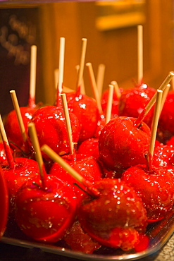 Bewitched apple (toffee apples) at Christmas, Alexander Platz, Berlin, Germany, Europe