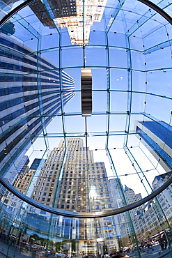 Skyscrapers of Fifth Avenue viewed from below through a glass roofed ceiling, Manhattan, New York City, New York, United States of America, North America - 794-943