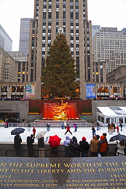 Christmas tree in front of the Rockefeller Centre building on Fifth Avenue, Manhattan, New York City, New York, United States of America, North America