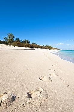 Warwick Long Bay, Jobson's Cove, Bermuda, Central America