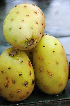 Mexico, Bajio, Zacatecas, Tunas or cactus fruit.