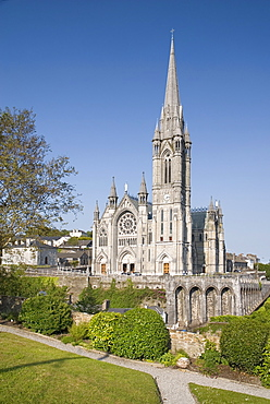 Ireland, County Cork, Cobh, St Colmans Cathedral.