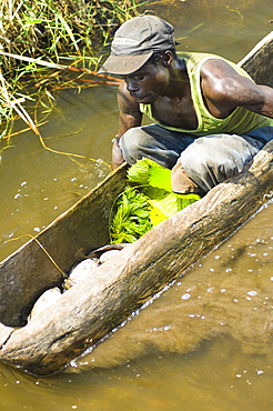 Burundi, Cibitoke Province, Cibitoke, Fisherman in dug out canoes on a small lake just north of Cibitoke town.