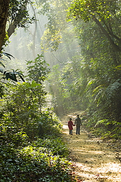 Bangladesh, Lowacherra Forest Reserve, Srimongal, Two sisters walking hand in hand along a path through dappled forest sunlight.