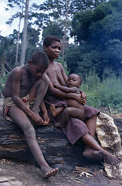 CONGO  Ituri Forest Mbuti pygmy family. Zaire Congo   Nomadic forest dwelling Twa people