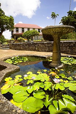 WEST INDIES Barbados St George Francia plantation house gardens and waterlilly pond with fountain