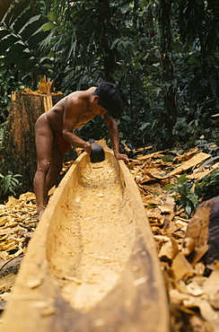 COLOMBIA Choco Embera Indigenous People Embera man using axe or adze .  to hollow out dug out canoe from large felled hardwood tree.Once completed canoe is dragged through forest to riverside home where final shaping takes place Pacific coastal region boat canoa tribe American Colombian Colombia Hispanic Indegent Latin America Latino Male Men Guy South America  Pacific coastal region boat piragua  tribe American Colombian Columbia Hispanic Indegent Latin America Latino Male Men Guy South America Male Man Guy One individual Solo Lone Solitary 1 Single unitary