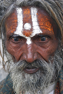 Portrait of elderly male Hindu beggar outside the Jagdish Temple, With painted forehead grey beard and fixed stare, Udaipur, Rajasthan, India