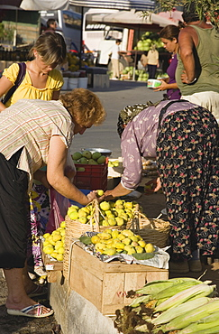 Turkey, Aydin Province, Kusadasi, Woman from local farm selling fruit and vegetables to shoppers at fresh produce market in town