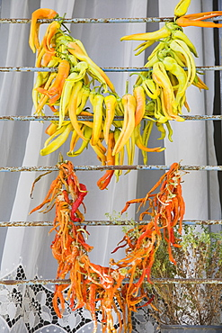 Turkey, Aydin Province, Kusadasi, Strings of brightly coloured chilies drying in late afternoon summer sunshine over window bars of house in the old town