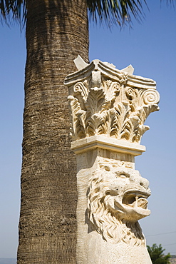 Turkey, Izmir Province, Selcuk, Corinthian column with protective lion mask beneath palm tree at ancient site of the Temple of Artemis