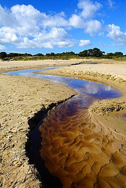 Small stream winding through the beach to the sea, Studland Bay, Dorset, England, United Kingdom, Europe