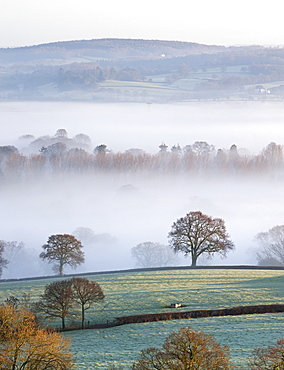 Mist covered countryside in the Exe Valley just north of Exeter, Devon, England, United Kingdom, Europe