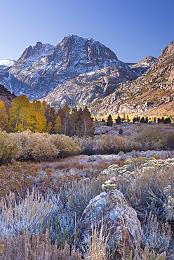 Frosty autumn morning on June Lake Loop in the Eastern Sierra Mountains, California, United States of America, North America