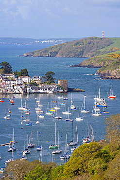 Boats moored in the sheltered waters of Fowey Estuary near Polruan, Cornwall, England, United Kingdom, Europe