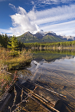 Autumnal morning at Herbert Lake in the Canadian Rockies, Banff National Park, UNESCO World Heritage Site, Alberta, Canada, North America