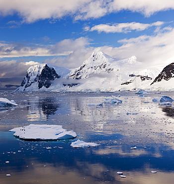 Penguins drifting on an iceberg through the Gerlache Straight, Antarctica, Polar Regions