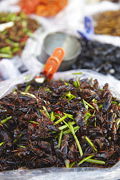 Deep fried insects at market, Phnom Penh, Cambodia, Indochina, Southeast Asia, Asia