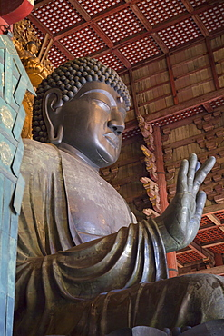 The Daibutsu (Great Buddha) inside Todaiji Temple, UNESCO World Heritage Site, Nara, Kansai, Japan, Asia