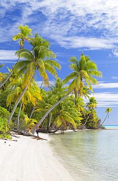 Couple on beach at Les Sables Roses (Pink Sands), Tetamanu, Fakarava, Tuamotu Islands, French Polynesia, South Pacific, Pacific