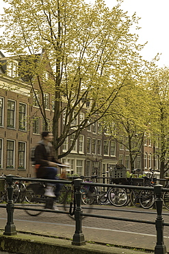 Man cycling over bridge on Lauriergracht canal, Amsterdam, Netherlands, Europe