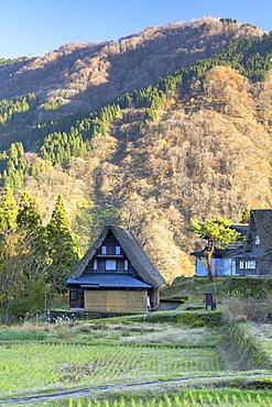 Traditional houses of Ainokura, UNESCO World Heritage Site, Gokayama, Toyama Prefecture, Honshu, Japan, Asia