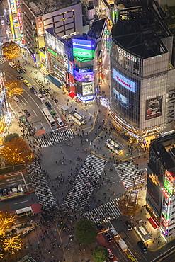 Shibuya Crossing at night, Shibuya, Tokyo, Honshu, Japan, Asia