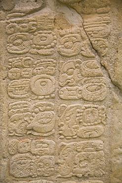 Stella 7, hieroglyphs, Mayan Archaeological Site, Yaxchilan, Chiapas, Mexico, North America
