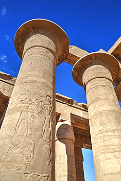 Column reliefs, Hypostyle Hall, The Ramesseum (Mortuary Temple of Ramese II), Luxor, West Bank, Thebes, UNESCO World Heritage Site, Egypt, North Africa, Africa
