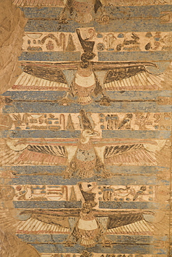 Paintings of vultures on the ceiling, Temple of Haroeris and Sobek, Kom Ombo, Egypt, North Africa, Africa