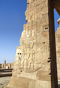 Bas-relief on walls, Temple of Haroeris and Sobek, Kom Ombo, Egypt, North Africa, Africa