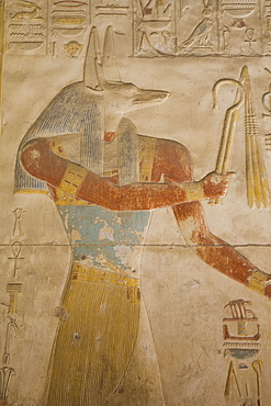 Bas-relief of the God Anubis, Temple of Seti I, Abydos, Egypt, North Africa, Africa