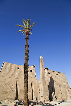 Obelisk, 25 meters high in front of plyon 65 meters wide, Luxor Temple, Luxor, Thebes, UNESCO World Heritage Site, Egypt, North Africa, Africa