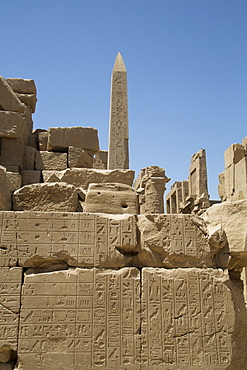 Hierogyliphics in foreground, Obelisk of Tuthmosis in the background, Karnak Temple, Luxor, Thebes, UNESCO World Heritage Site, Egypt, North Africa, Africa